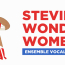 Stevie Wonder Women : back in business